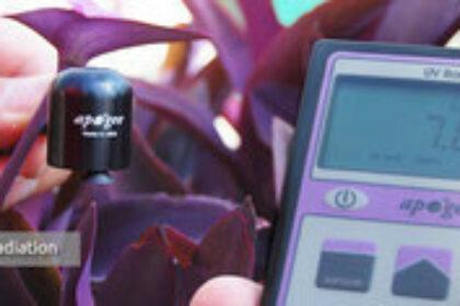 capteurs de mesure vitalite des plantes