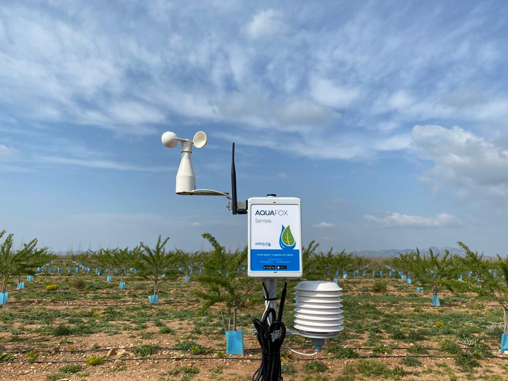 étude consommation d'eau parcelle agricole