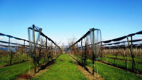 irrigation pour technicien agricole