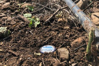 mesure des ions du sol